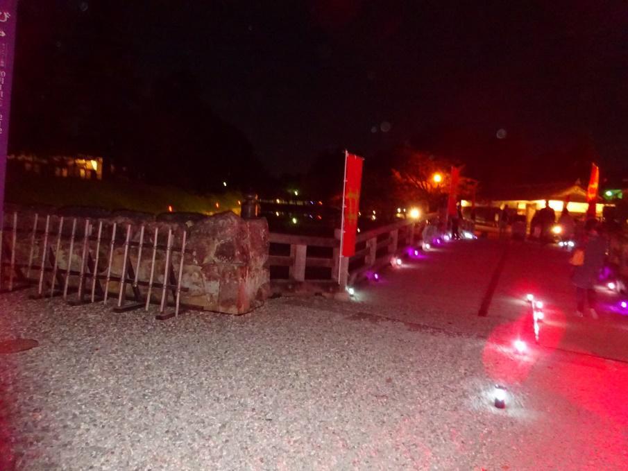 ライトアップされた夜の彦根城に登ってみた
