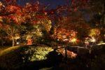 第13回兵主大社庭園紅葉ライトアップ
