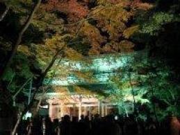 大本山 永源寺 ライトアップ