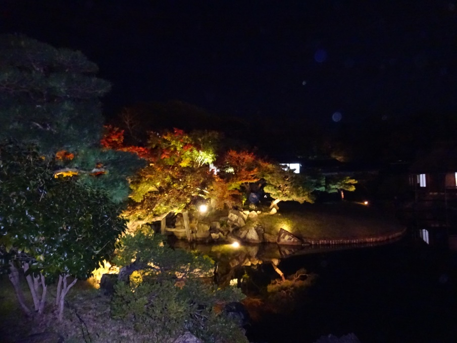 幻想的な雰囲気に圧倒! 玄宮園のライトアップ