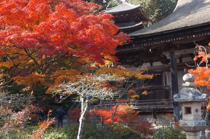 三つのお寺で国宝と紅葉を楽しむ、「湖南三山めぐり」