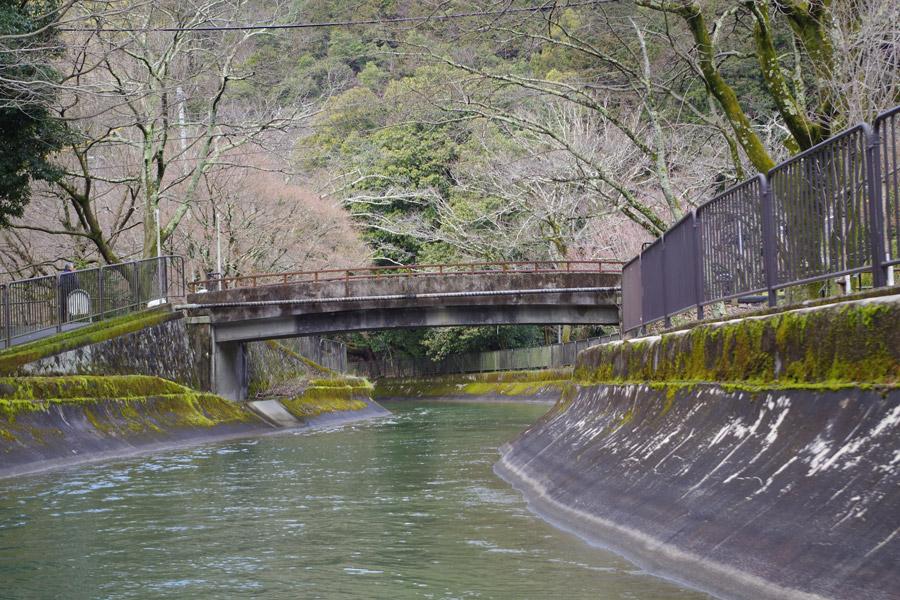 「琵琶湖疏水クルーズ体験」してきた