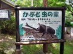 【8/16まで】比叡山ドライブウエイ「かぶと虫の家」に行ってきた!