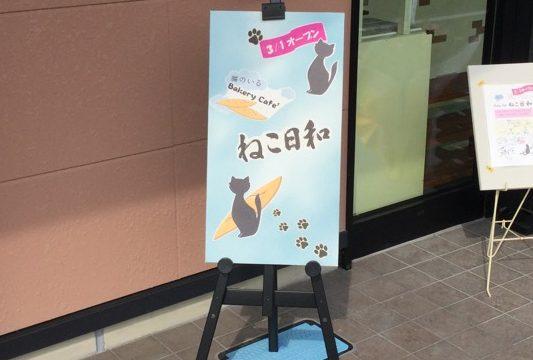 【3/1新店】猫カフェ ✕ パン屋[ねこ日和](南草津)