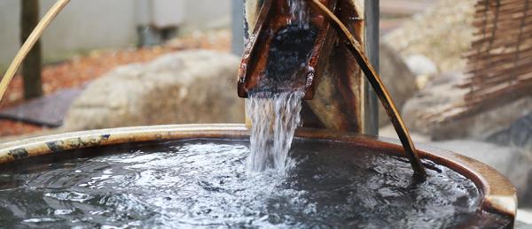 蒲生野の湯