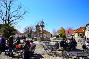 「ブルーメの丘」春のリニューアルで更に楽しく!【日野町】