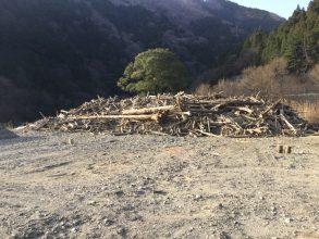 【3/31:再開】流木の配布が再開されました「永源寺ダム」【東近江】