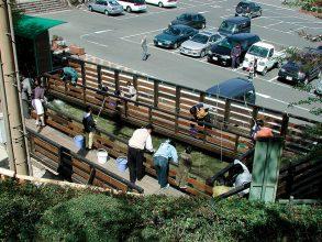 【4/28~5/6】比叡山ドライブウェイに、ザリガニ王国が登場!