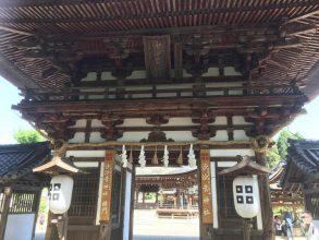 沙沙貴神社のなんじゃもんじゃを見に行ってきた!【近江八幡】