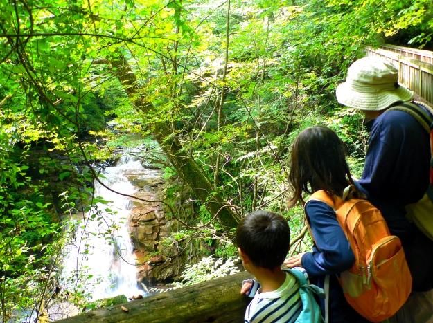 【6/30(土)】希望が丘ハイキングで歴史と自然を満喫!