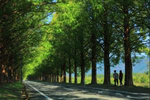 話題のLAMPに行くなら寄ってみて!かとちゃんプロデュース寄り道in高島