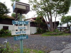 【新店】『cafe tree's』リゾートしたくなったら、「カフェツリーズ」に行ってみよー!in草津新浜