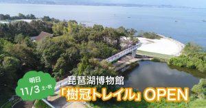 【11/3】琵琶湖博物館「樹冠トレイル」オープン! 森とびわ湖を上から眺められる新シンボル