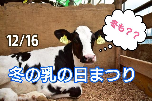 12/16日 成田ふれあい牧場「冬の乳の日まつり」で寒さに負けず楽しい一日を。(甲賀市)
