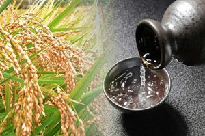 【参加募集中】お米から作るお酒づくり!「天までとどけ」ができるまで~田植え編【5/18締切】