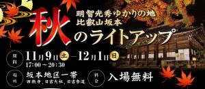 【11/9〜12/1】比叡山坂本 秋のライトアップ【大津・坂本】