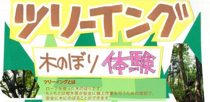 【3/20(金祝)】絶景かな、絶景かなー!ツリーイング(木登り体験) びわこ文化公園