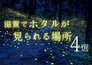 初夏の風物詩!滋賀でホタルが見られる場所・4選