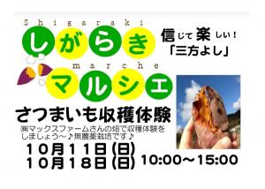 【10/11・18】無農薬栽培の「さつまいも収穫体験」に行こう!予約・申込不要。(甲賀市)