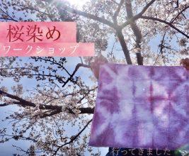 【行ってきました】桜染めワークショップ@草津川跡地公園【3/27・28】「桜の葉」を使って染め物体験♪