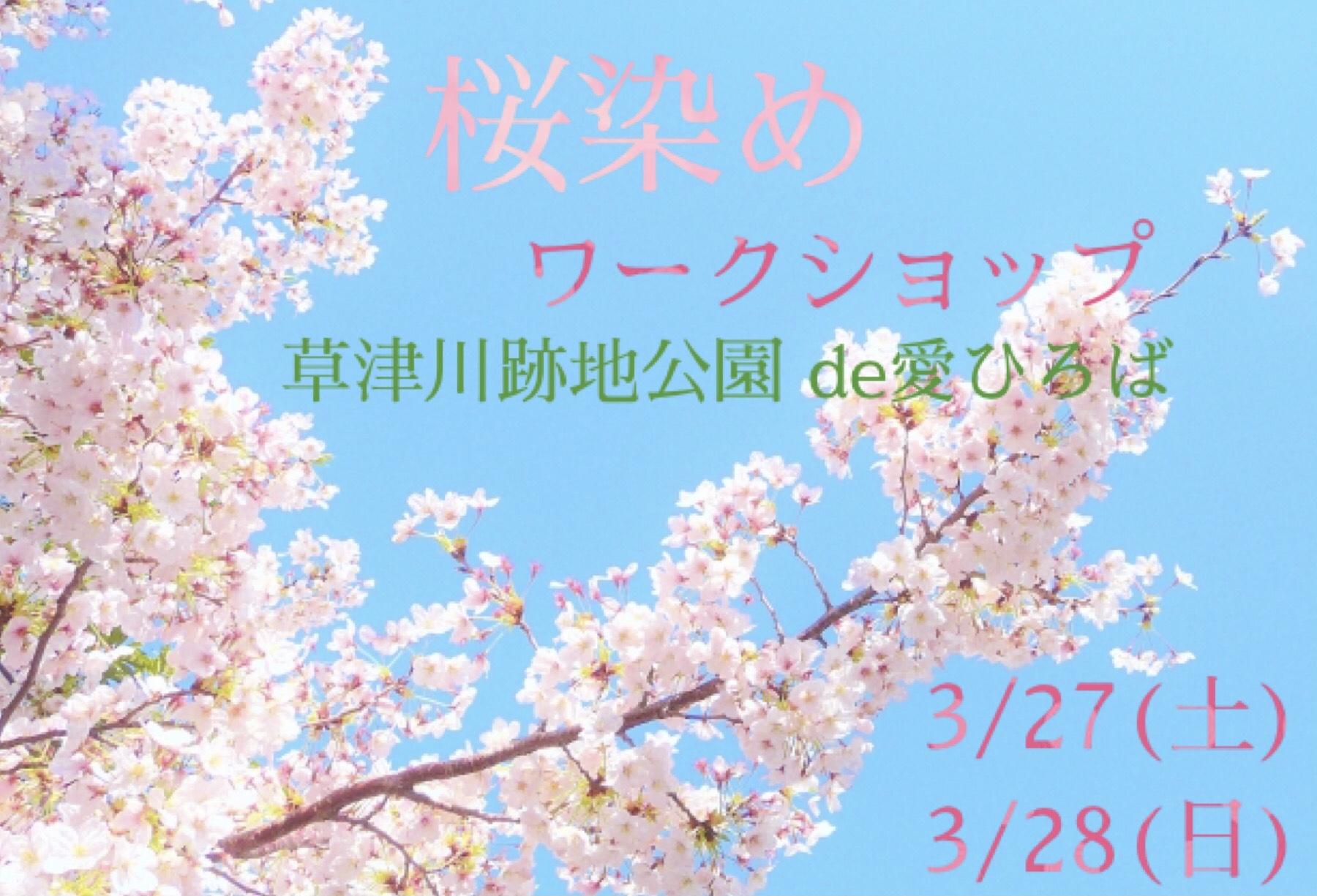 【3/27・28】桜染めワークショップ【草津川跡地公園】「桜の葉」を使って染め物体験♪