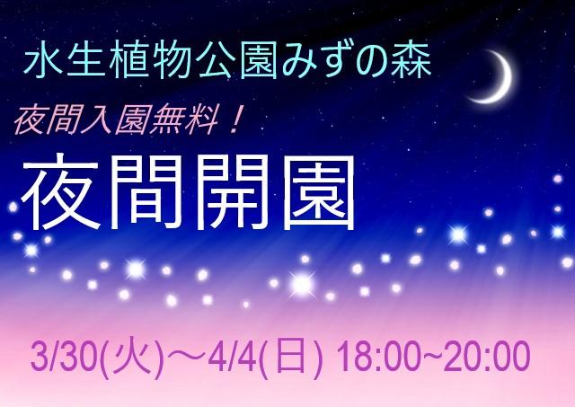 【3/30~4/4】入園無料‼夜間開園【草津市立水生植物公園みずの森】