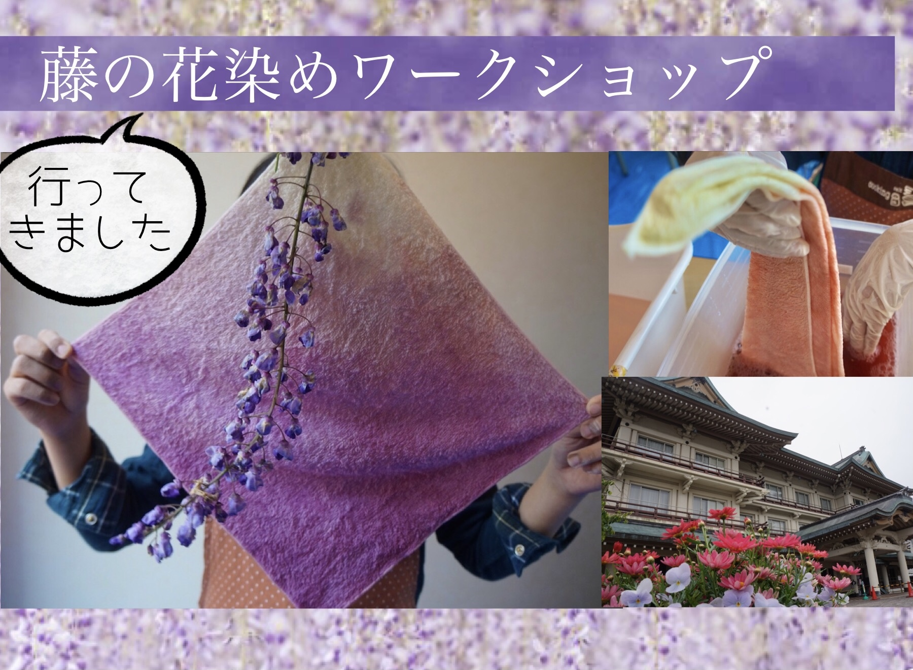 【行ってきました】藤の花染めワークショップ【5/8(土)9(日)】【びわ湖大津館】