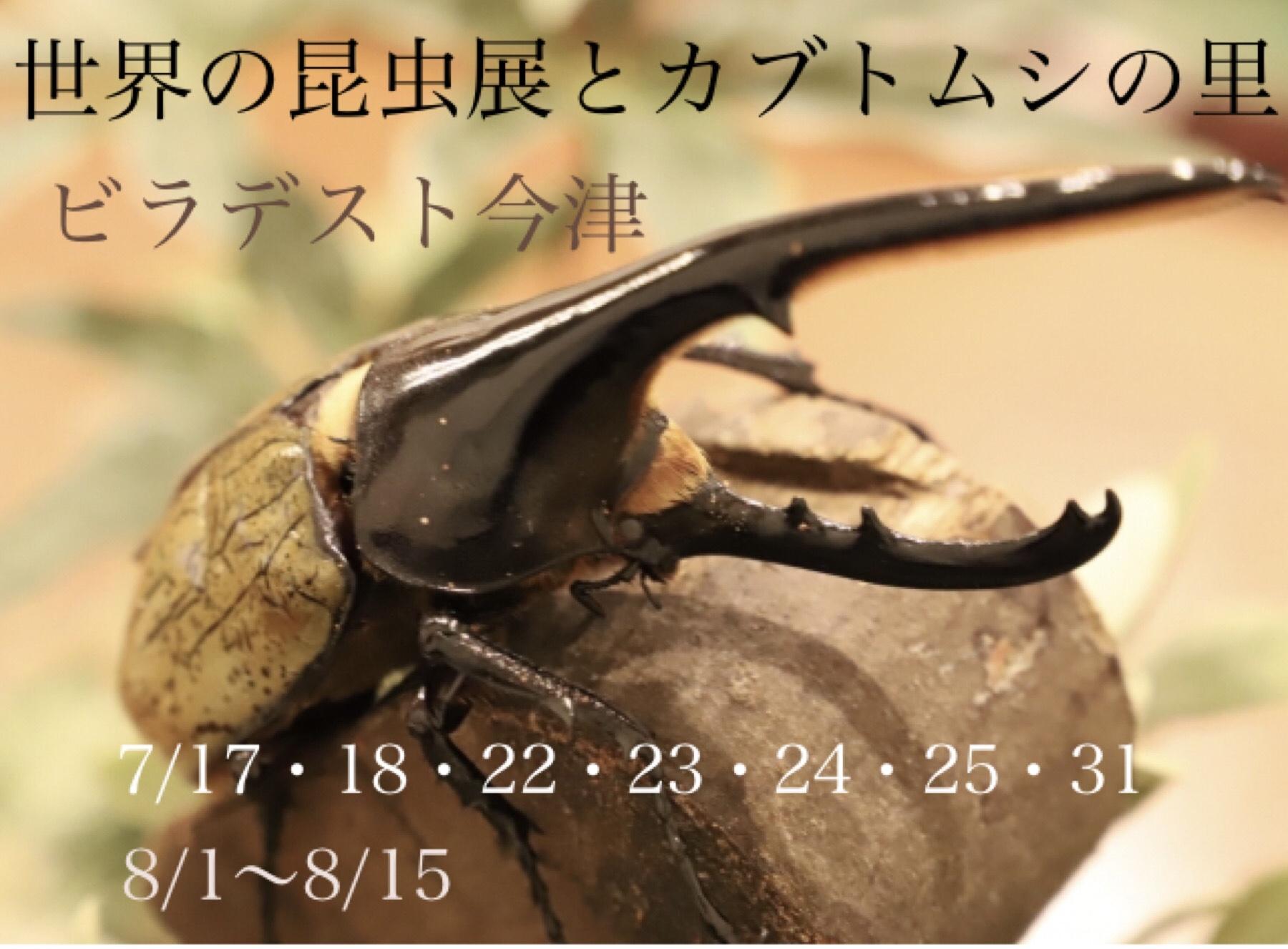 世界の昆虫展とカブトムシの里【7/17~8/15うち22日間】ビラデスト今津