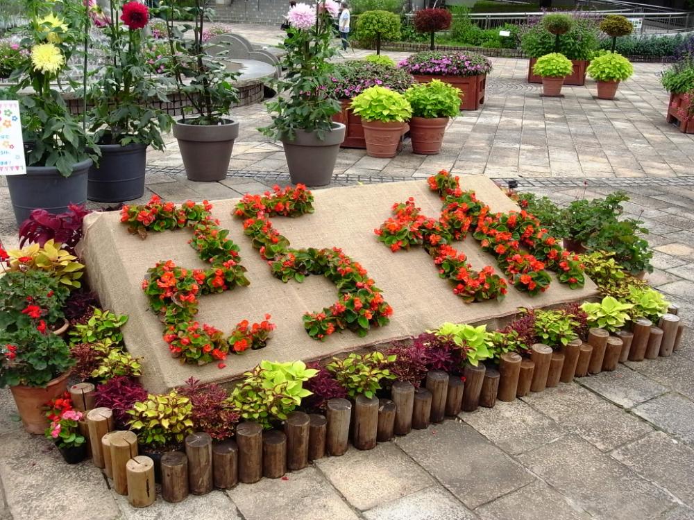 【7/10(土)〜18(日)】開園25周年記念 ハスウィーク!に行ってきました! 水生植物公園みずの森(草津)