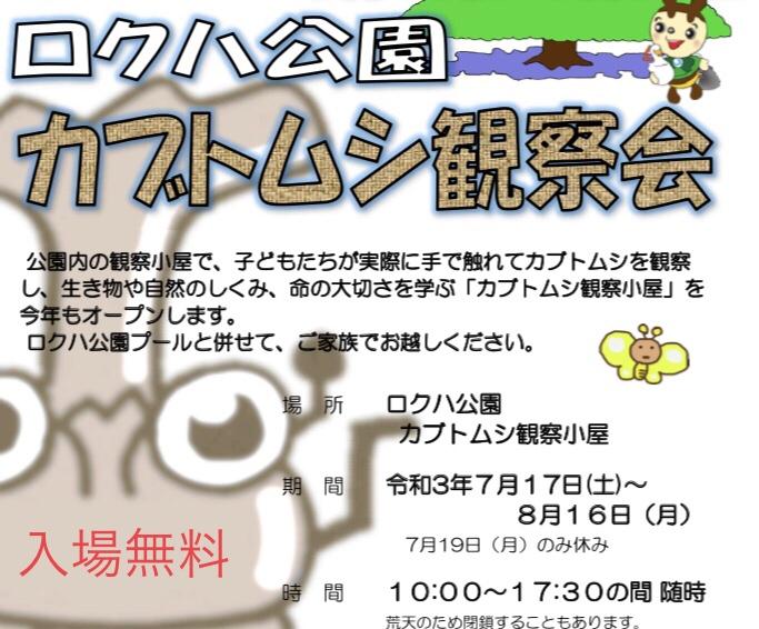 【~8/16】カブトムシ観察会【ロクハ公園】入場無料♪かぶと虫を手に持って観察しよう!